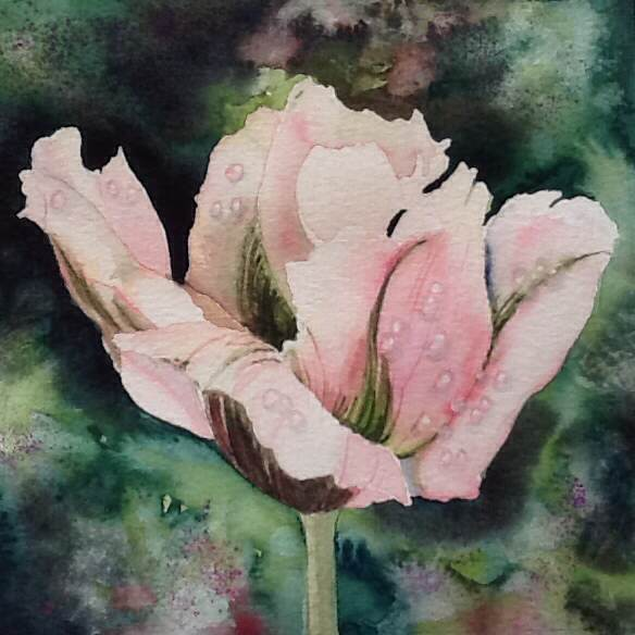 Just one of Jane's stunning watercolours